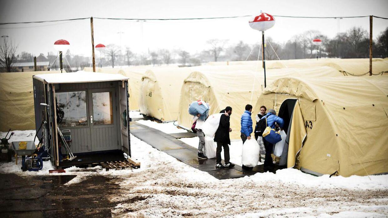 Arkivfoto: Teltlejren i Næstved lader en del tilbage at ønske for mange dens beboere. Ikke mindst de tre nu tidligere asylsøgere, som TV ØST har talt med, og som betegner forholdene i lejren »som et fængsel«. De fortryder, at de overhovedet forlod venner og familie og tog ud på den lange og farlige rejse mod Europa.
