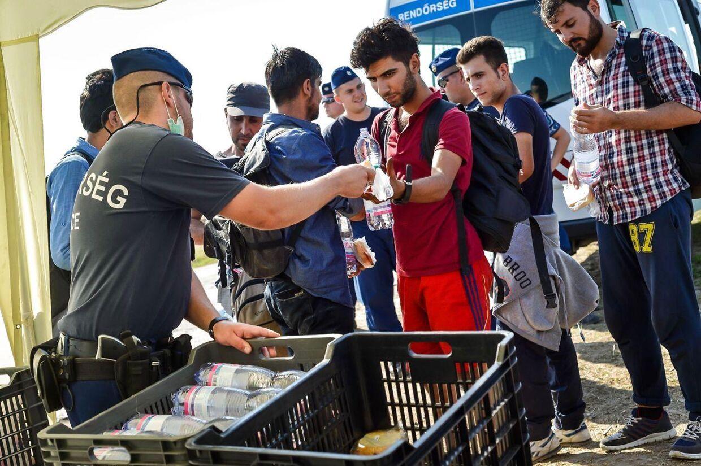 Har du også svært ved at finde ud af, hvad der er rigtigt eller forkert i forhold til de mange historier om flygtningesituationen i Europa? BT forsøger at hjælpe dig her.