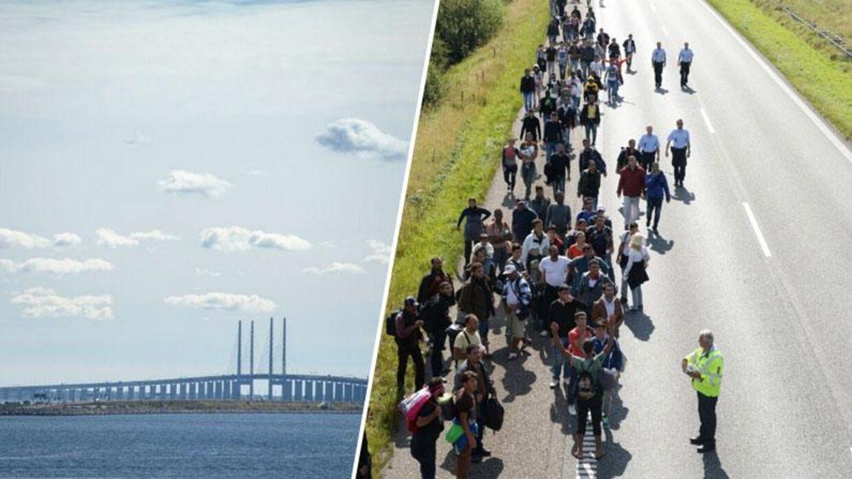 Svensk politi frygter, at flygtninge vil begynde at krydse Øresundsbroen for at nå frem til Sverige - på samme måde som Eurotunnellen mellem Frankrig og England, som tusindvis af flygtninge og migranter har forsøgt at krydse til fods. Foto: Niels Ahlmann Olesen/Claus Fisker)