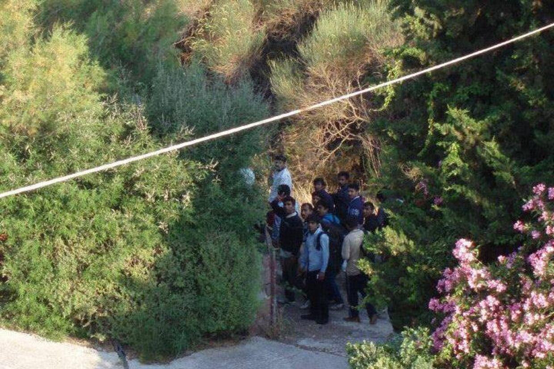 Henriette Larsen er netop vendt hjem fra en uges ferie på Lesbos med sin mand. Hun synes, hun har fået sin ferie ødelagt af de mange flygtninge, som hver morgen ramte kysten i deres gummibåde foran hendes hotel på den nordlige del af øen. Fotoet er taget af Henriette Larsen.