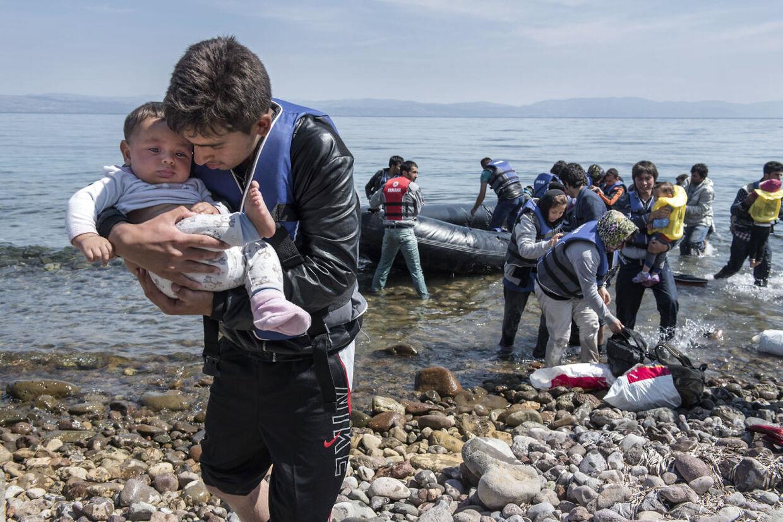 77.000 flygtninge er gået i land ved græske kyster alene i år. 60 procent af den fra fra det krigsramte Syrien.