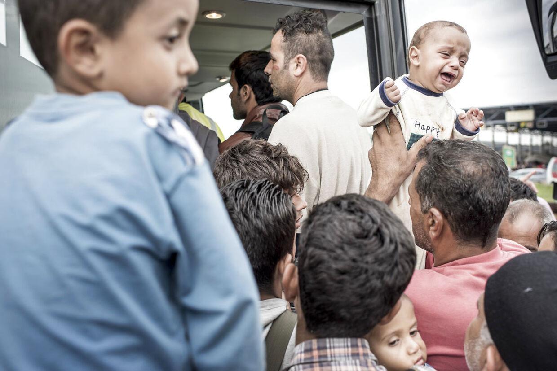 Flere tusinde flygtninge og immigranter har over de seneste måneder udgjort en folkevandring igennem Europa.