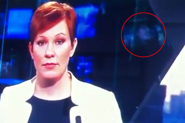 Svensk TV4 havde pludselig porno kørende i baggrunden af deres nyhedsudsendelse