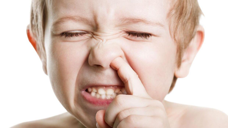 Flere danskere har svært ved at holde fingrene fra næsen - også i offentligheden.