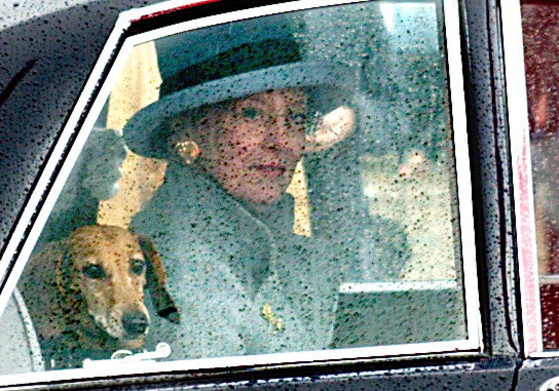 Dronning Margrethe på Toldboden i regnvejr, hvor hun sammen med Prins Henrik afsluttede sommerens tur og gik i land fra kongeskibet Dannebrog. Her i bilen sammen med den kongelige gravhund.