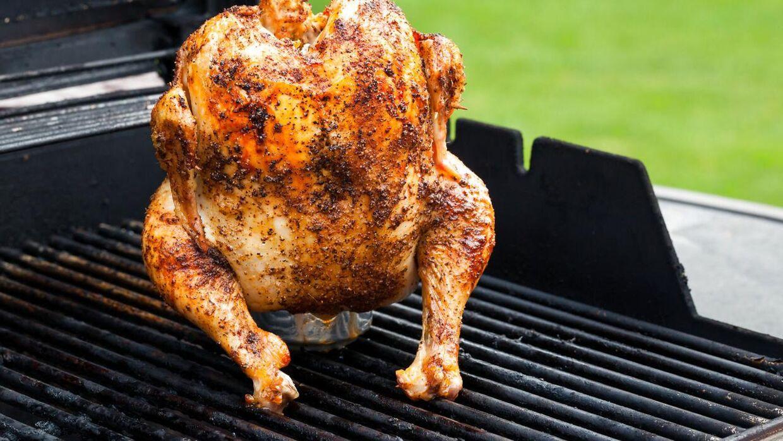 kylling med øldåse