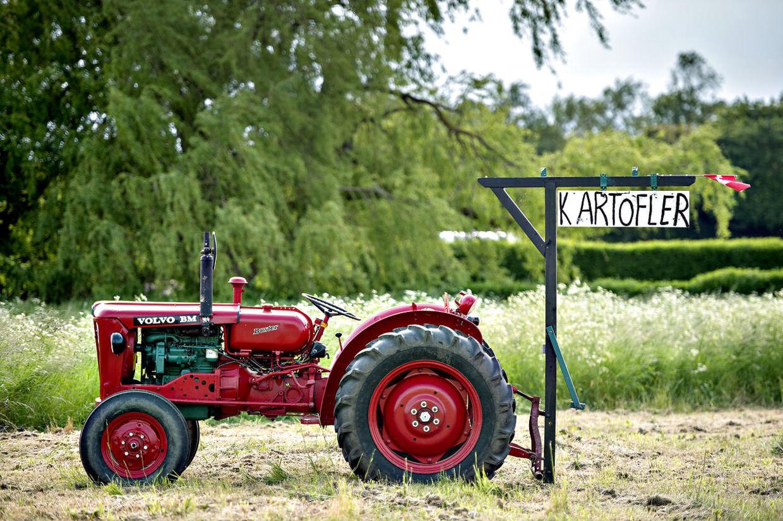Landsbyidyl i Tømmerup. En veterantraktor og et skilt der lover lækre nye kartofler.