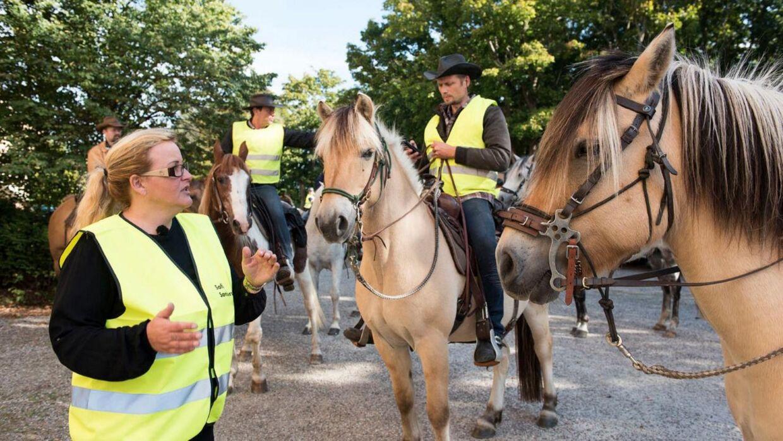 Frivillige eftersøgere fra gruppen Forsvundne Personer til hesteryg leder efter Emilie Meng i sommeren 2016.