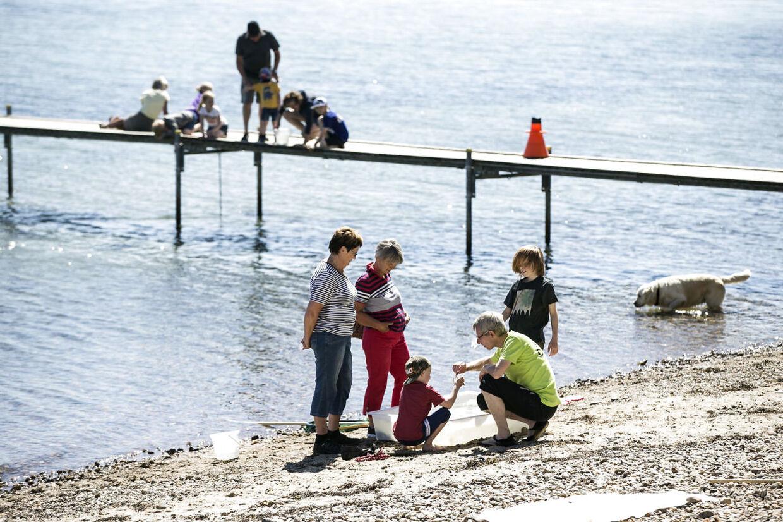 4. Gåtur på strandenEn gåtur på stranden, mens man kigger efter rav, muslingeskaller eller sten er en god sommerbeskæftigelse. Og en god gåtur er også Anne Bechs yndlings kalorie-forbrænder, hvis det ikke skal være træning:»Jeg elsker at gå tur. Alle steder. Hjemme, de samme ture vi går hver dag året rundt, turene i sommerhuset, nye ture sydpå, eller hvor vi nu tager hen om sommeren,« siger hun.Kvinde på 65 kilo: 1 time og 45 minutterKvinde på 75 kilo: 1,5 timerMand på 80 kilo: 1,5 timerMand på 90 kilo: 1 time og 15 minutter