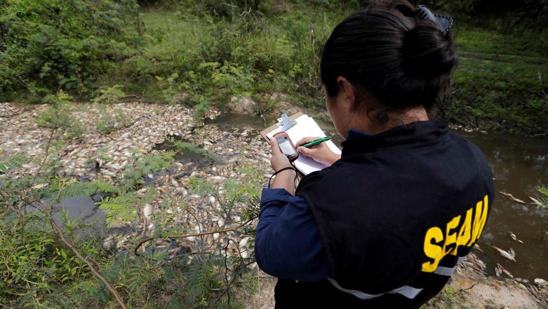 Et medlem af Paraguay's Miljøministerium tager notater for at kunne undersøge sagen nærmere.