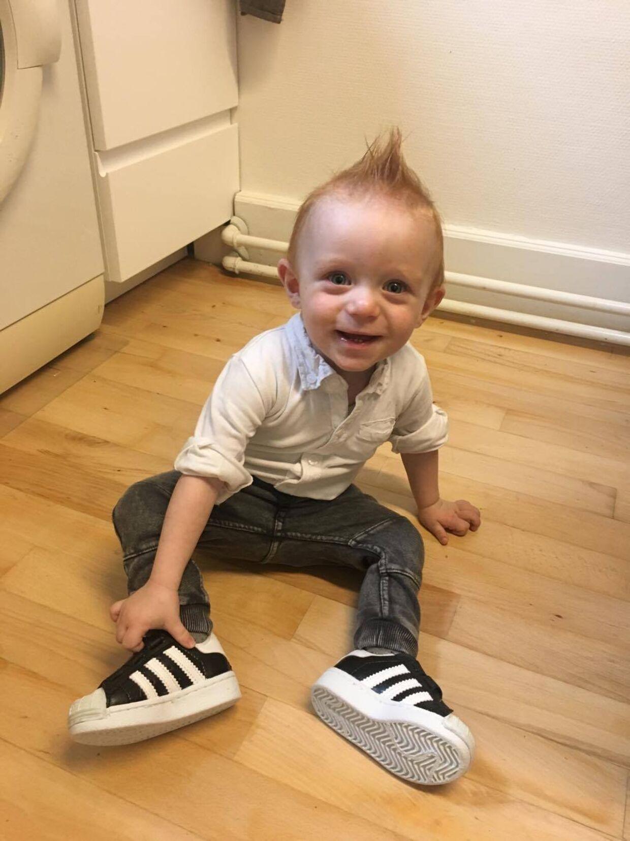 433ae79c Liam fyldte et år den 29. september og er lige begyndt at gå. Foto. Liam  fyldte et år den 29. september og er lige begyndt at gå. Foto