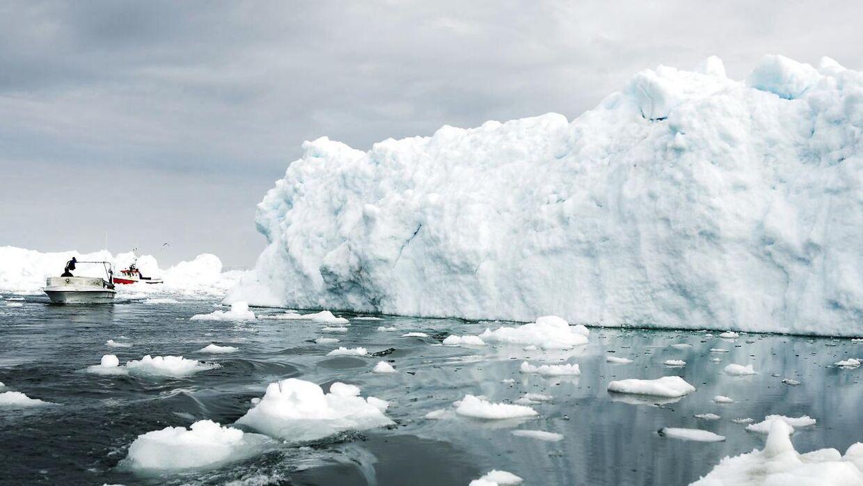 Arkivfoto. Mere end 15.000 forskere advarer i et åbent brev mod blandt andet voldsomme klimaforandringer.