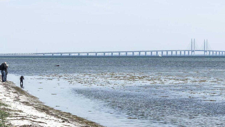 Valutakursen på den svenske krone er lige nu så billig, at det sagtens kan betale sig at krydse Øresundsbroen for en omgang shopping.