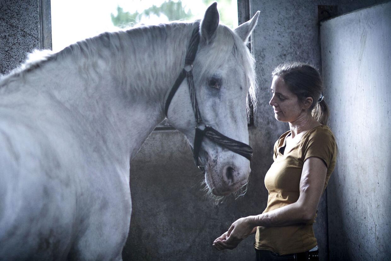 Cecilie Skovbjerg finder ro på Hylke Ridecenter sammen med sin hest.