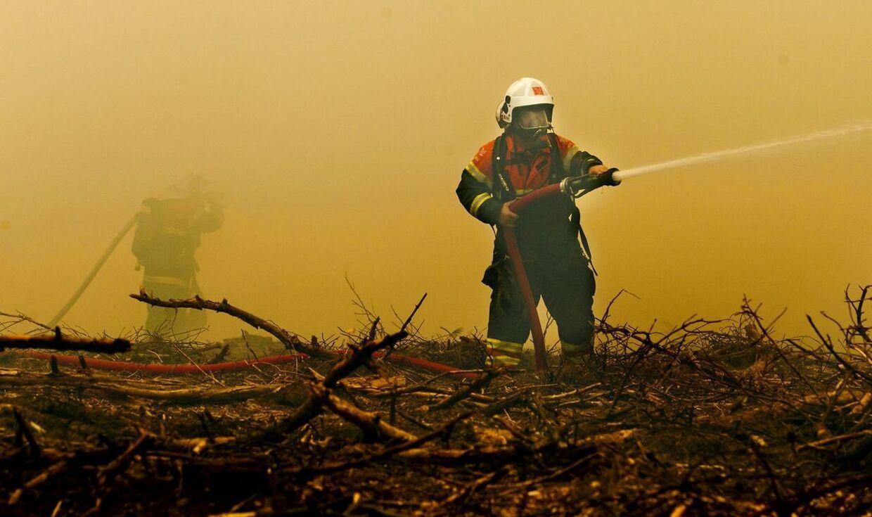 Sådan så det ud i Klosterhedens plantage ved Lemvig for et år siden, og lige nu er riskoen for en skovbrand igen overhængende. Jord, græs, træer og buske tørster i den grad efter vand, så pas på, hvis du bruger åben ild. (Arkivfoto) Foto: