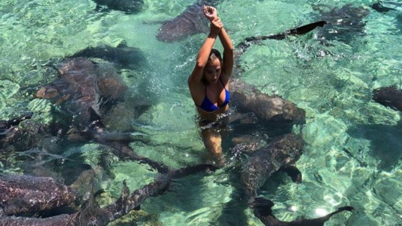 Katarina siger til BBC, at hun er vant til at opholde sig i vand hjemme i Californien. Derfor vidste hun, at hun skulle skynde sig at få armen op af vandet, så blodet fra såret ikke spredte sig i vandet. Desuden stod hun meget roligt, fordi der er øget risiko for at hajer angriber, hvis man flagrer med arme og ben. (Privatfoto)