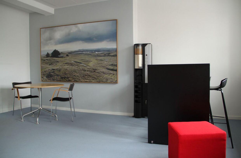 Dette billede har titlen Rævejagt set fra toppen af Dødemandsbjerget og er udført af Morten Barker. Det kostede godt 41.000 kroner.