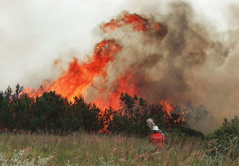 Brandvæsenet rykker ud til rekkordmange naturbrande i disse dage.