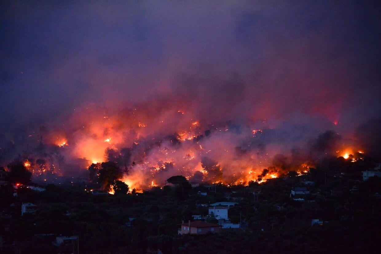 Marc Castellnou frygter, at mange flere ildstorme vil ramme Europa i fremtiden.