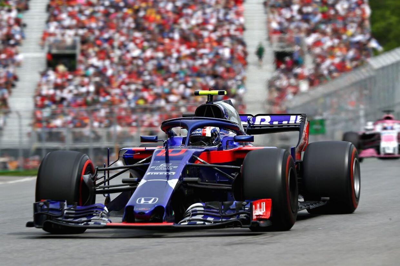 Pierre Gasly har gjort det så godt hos Toro Rosso, at han blev belønnet med en kontrakt hos Red Bull. (Foto: Mark Thompson/Getty Images)