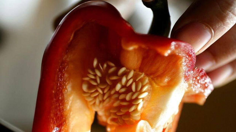 Økologiske snackpeber købt i Rema 100 i poser med 2-3 stykker trækkes nu tilbage.
