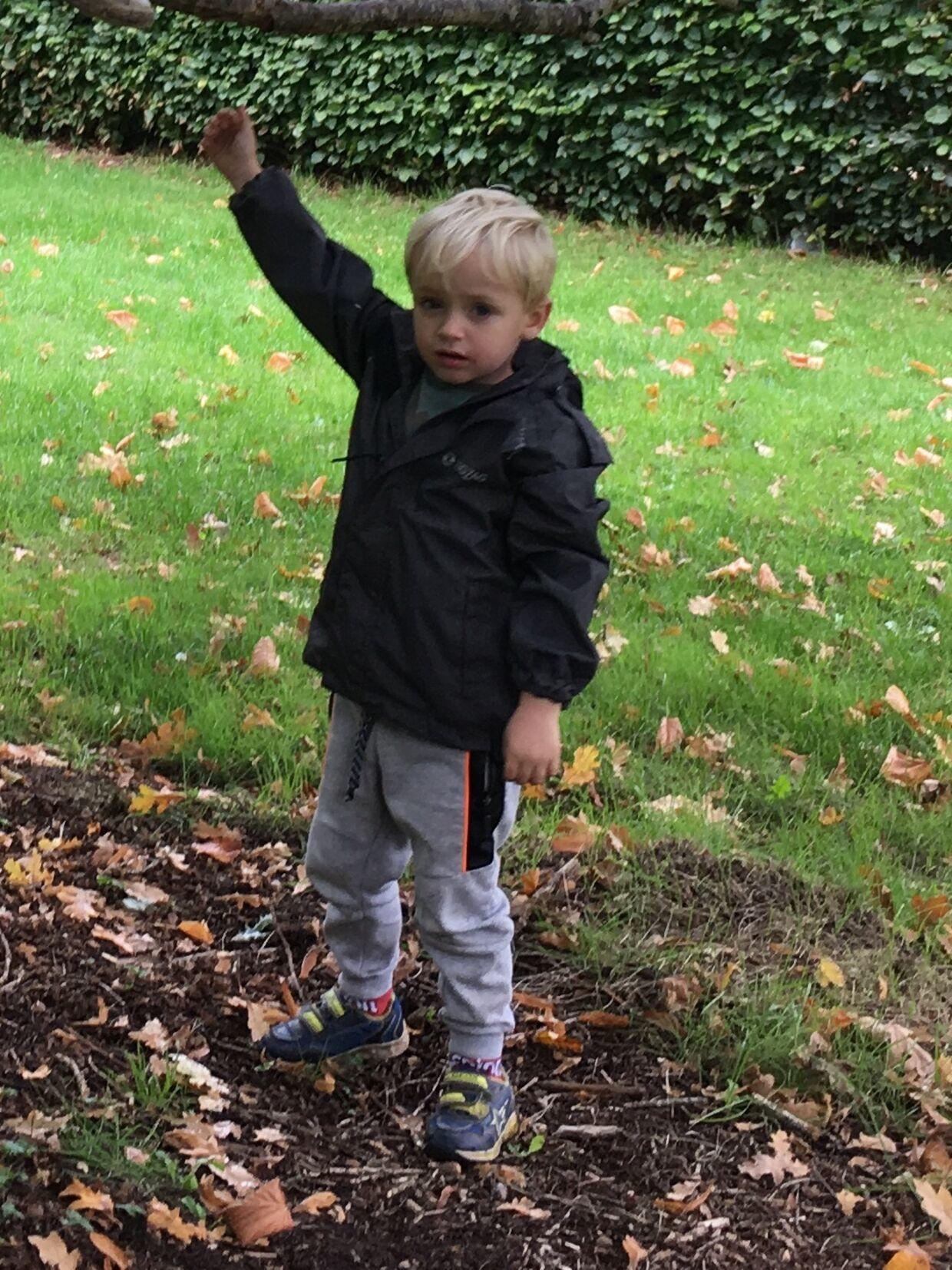 Ole Christiansen fra Nørresundby fik et chok, da hans treårige søn, Philip, forleden - i al hast - blev kørt til Giftlinjen på Aalborg Sygehus efter at have spist frø fra et stort træ i børnehaven.