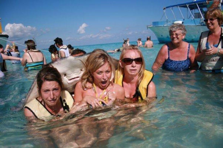 Det sjove feriebillede af de tre skræmte piger har nu fået en historie