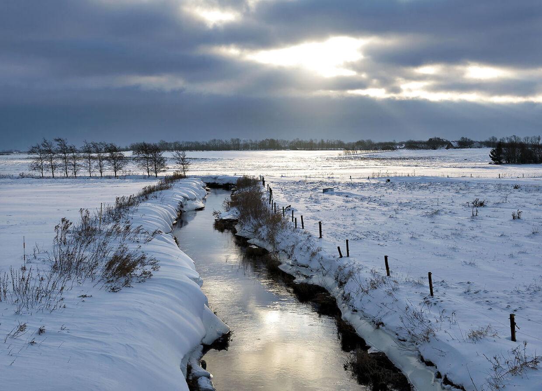 Det er to-cifrede plusgrader i disse dage, men i december kan vejret ændret sig til sne og kulde, viser DMI's prognoser (Foto: Henning Bagger/Scanpix 2018)