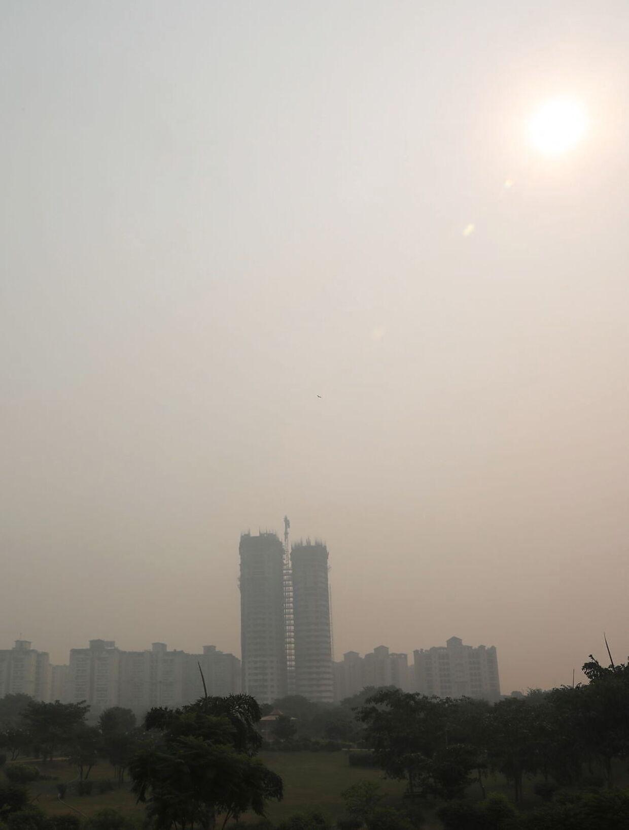 New Delhi er badet i smog. EPA/HARISH TYAGI