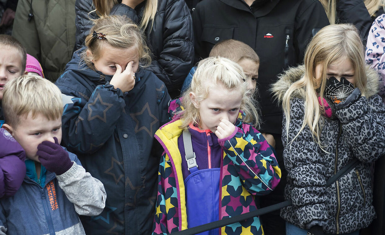 I 2015 vakte det stor opsigt, da Odense Zoo offentligt parterede en løve foran publikum.