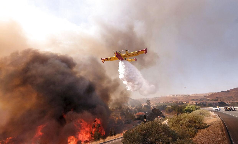 Et fly forsøger at stoppe en brand, inden den når en befærdet vej i Californien (AP Photo/Ringo H.W. Chiu)