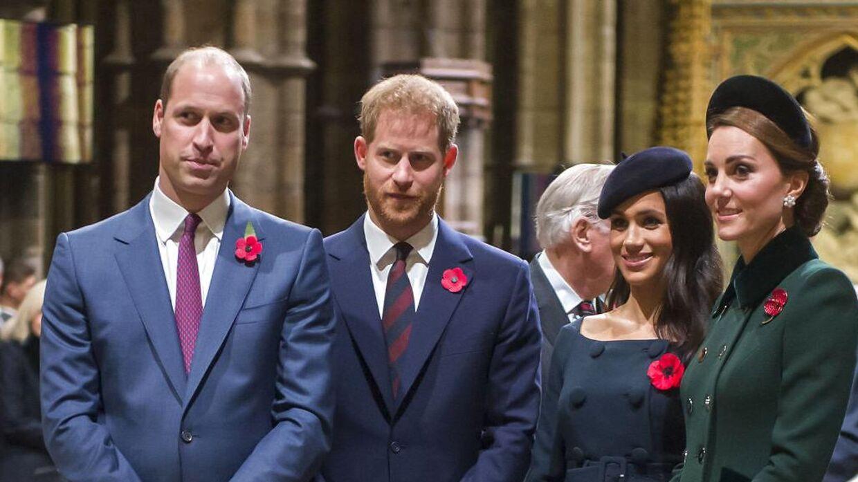 Ifølge en rutineret dokumentarist skulle der være kold luft mellem prins William og prins Harry.
