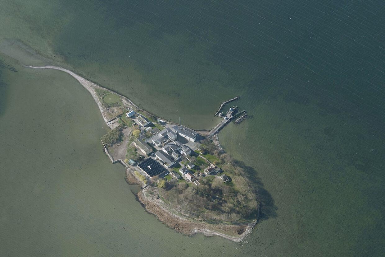 Øen Lindholm i Stege Bugt. (Foto: Styrelsen for Dataforsyning og Effektivisering/Ritzau Scanpix)