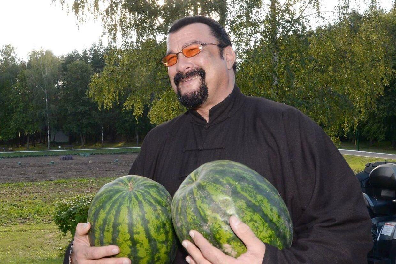 Steven Seagal slipper for endnu en sex-sag. Her er han fotografet med nogle store meloner.