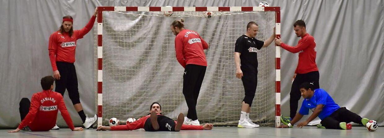 Det danske herrelandshold træner forud for håndbold-VM, der spilles i januar i Danmark og Tyskland.