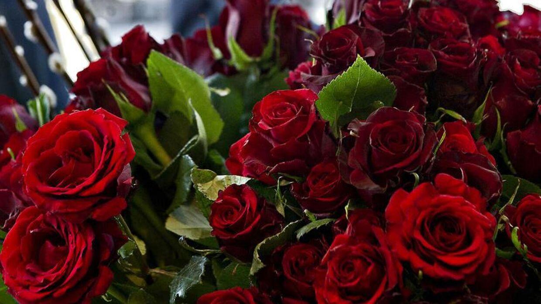 Roserne er stillet op dagen inden Valentins Dag. Arkivfoto 2012 (Scanpix)