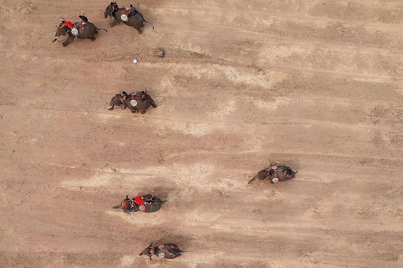 Dette luftfoto viser elefanterne på vej mod afgørelsen i ræset.