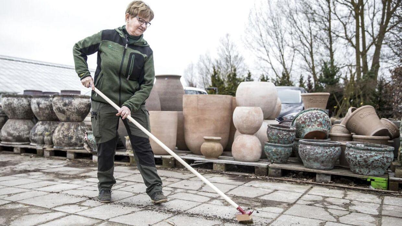 Lissi Bjerregaard fra Nybo Planteskole i Humlebæk viser her, hvordan man kan fjerne ukrudt uden at bruge Roundup. Det er mere fysisk krævende at bruge værktøj til at fjerne ukrudt med, men til gengæld får man så også gratis motion.