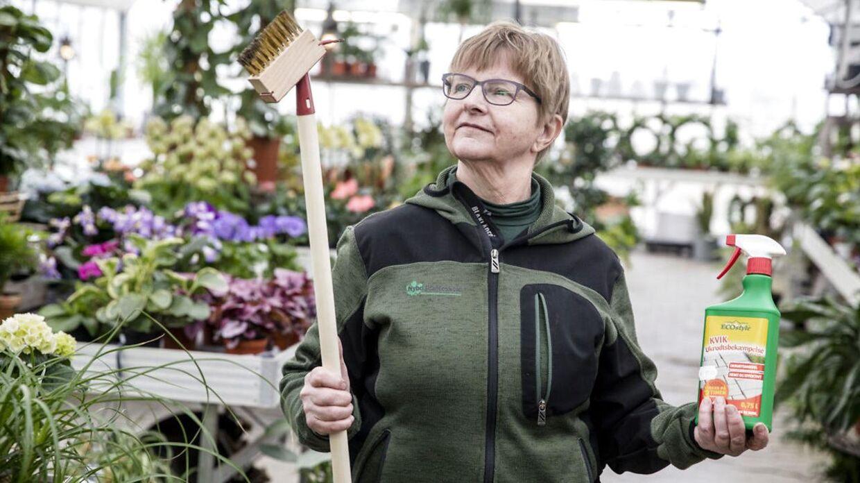 Lissi Bjerregaard fra Nybo Planteskole i Humlebæk ses her med et værktøj til at fjerne ukrudt mellem fliser og et mere miljø-rigtigt sprøjtemiddel såkaldt pelargonsyre.