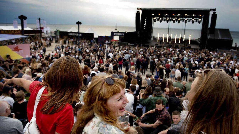 Adskillige danskere er blevet lænset af en svindler, når de har forsøgt at købe billetter til festivalen 'Musik i lejet'.