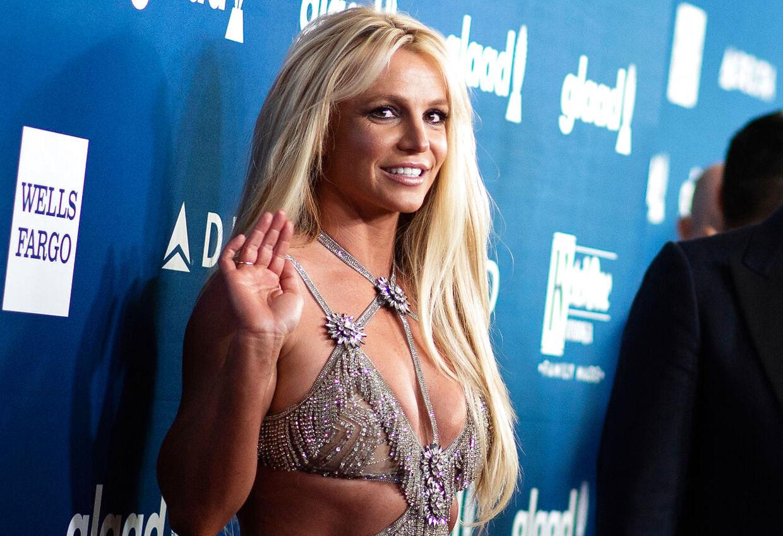 Britney Spears og hendes familie har angiveligt været udsat for chikane.