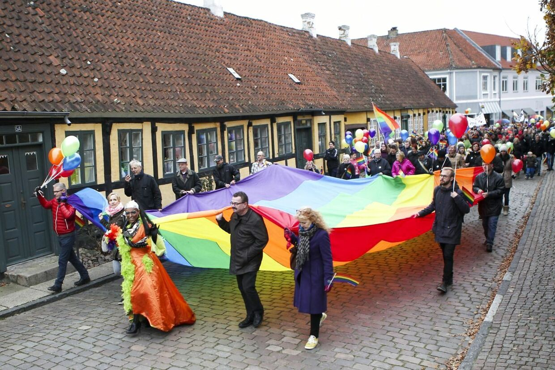Sagen om chikane parret i Mariager vakte stor opsigt, og over 500 mennesker var lørdag den 15. november 2014 mødt op for at vise deres sympati med det lesbiske par.