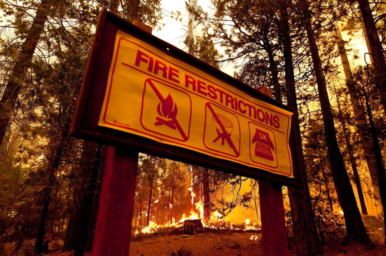 Californiens guvernør Edmund G. Brown Jr. har erklæret undtagelsestilstand på grund af skovbranden i Tuolumne County, California. EPA/NOAH BERGER