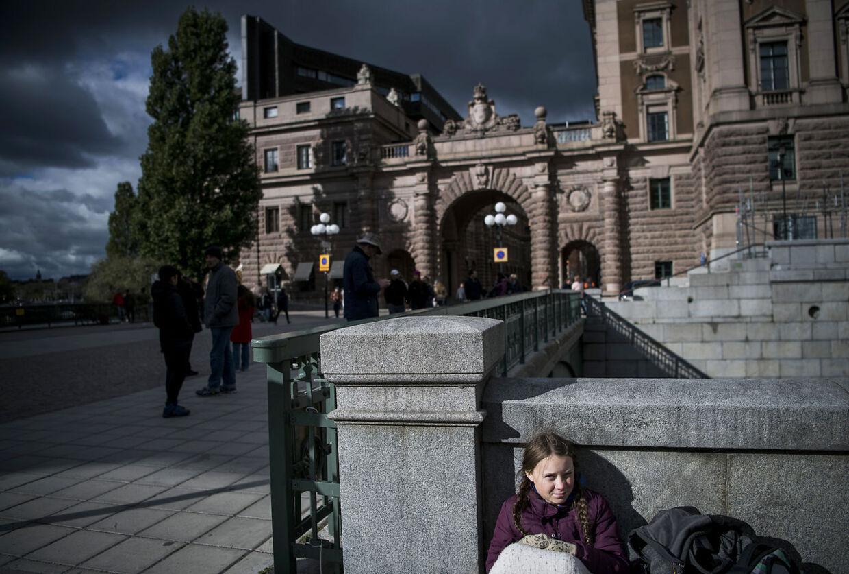 Lille Greta foran den svenske Riksdag. Billedet er fra en af de første fredage i august sidste år, hvor hun indledte sine strejker.