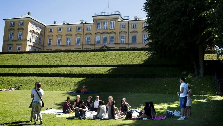 Skovtur i Frederiksberg Have