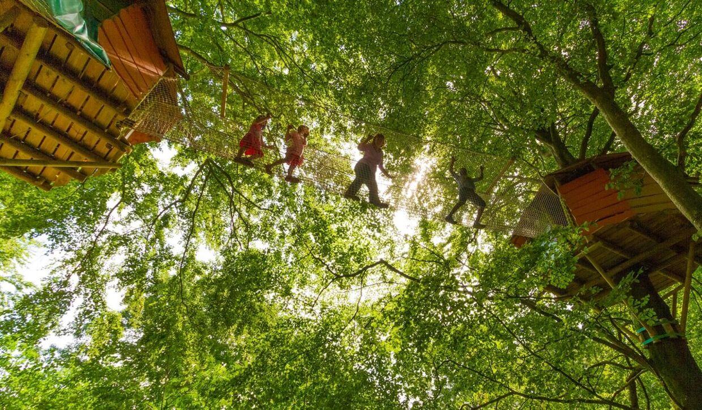 Kun fantasien sætter grænser i WOW Park, der bruger skoven som legeplads.