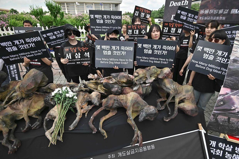 Her demonstrerer de sydkoreanske modstandere af hundekød med 'dukker', der ligner slagtede hunde, foran parlamentet i Seoul.