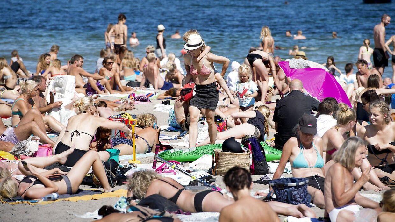 Arkiv: Svanemøllen Strand i København vil nok atter være populær i næste uge.