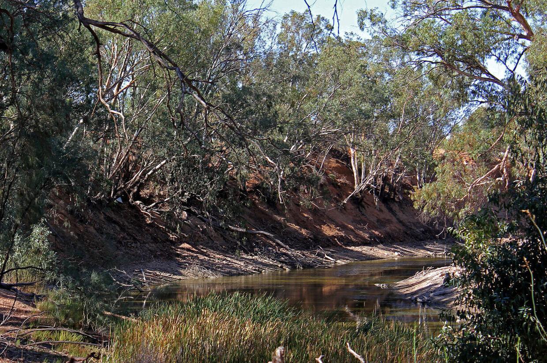 Den australske delstat New South Wales har været plaget af tørke siden 2017.