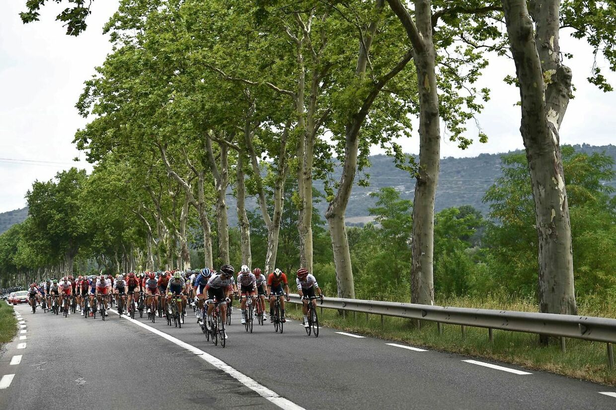 The pack rides during the fifteen stage of the 106th edition of the Tour de France cycling race between Limoux and Foix Prat d'Albi, in Foix Prat d'Albi on July 21, 2019. (Photo by Anne-Christine POUJOULAT / AFP)